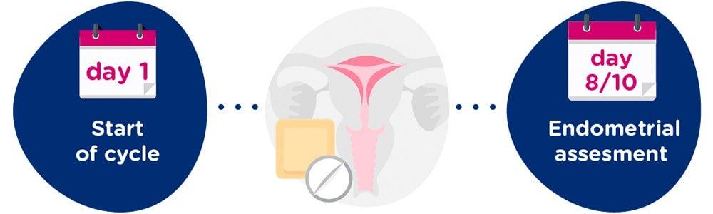 Endometrial preparation