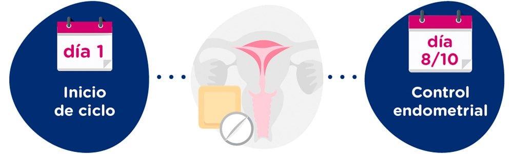 Preparación endometrial