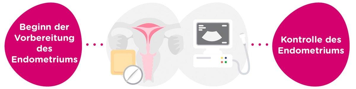 Vorbereitung des Endometriums + gynäkologische Untersuchungen