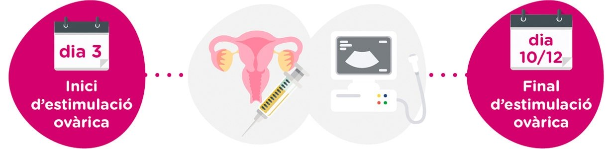 Estimulació ovàrica + controls ginecològics