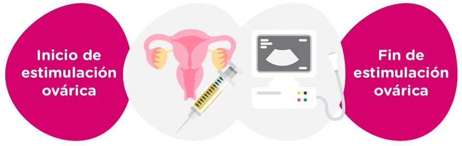 Estimulación ovárica + controles ginecológicos