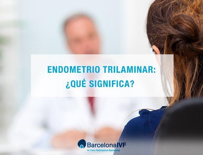 ivf-endometrio
